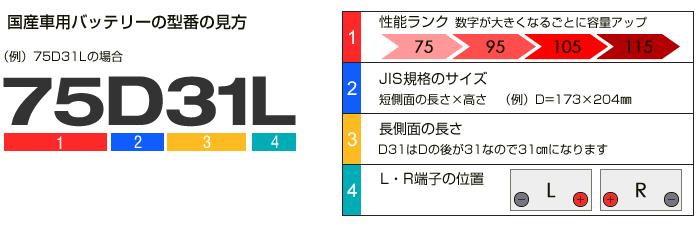 D31の型番の見方